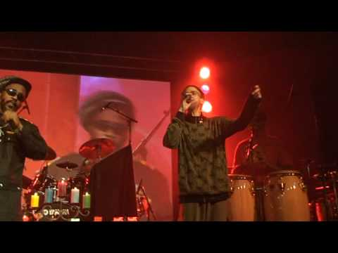 andrew tosh rocker-t amsterdam cannabis cup 2008 g...