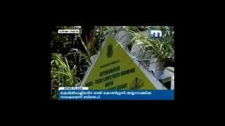 Innovative Farming method in Kerala