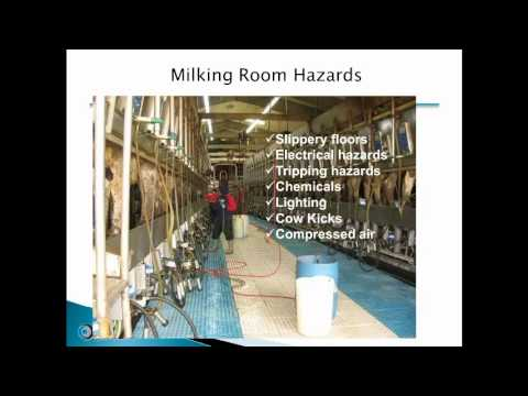 Update on OSHA Inspections on Dairy Farms