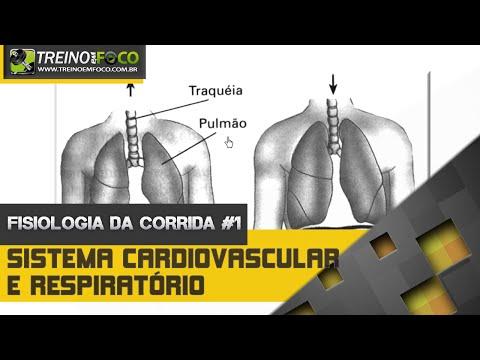 Sistema Cardiovascular e Respiratório - Fisiologia da Corrida #1