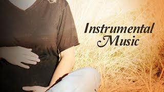 Instrumental Music (Garbh Sanskar)   Dr. Shri Balaji Tambe   Times Music Spiritual