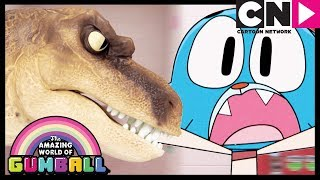 Gumball | Tina The Bully - The Fight (clip) | Cartoon Network