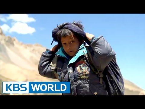 KBS Panorama : Himalayan, Path of Yarchagumba | KBS 파노라마 : 히말라야 人, 야차굼바의 길 - Part 1 (2014.11.05)