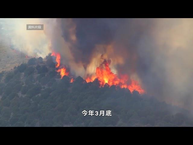 【天下新聞】加州: 紐森建議 為山火預防項目投入20億元