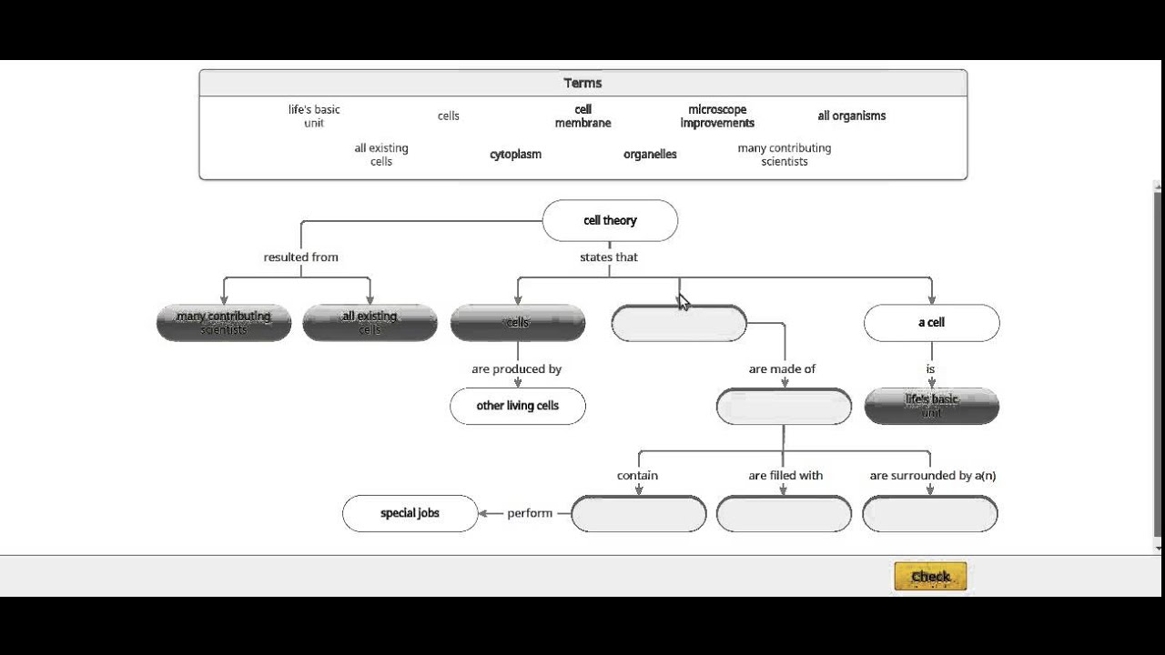 Cell Theory Concept Map.Cambridge As Level Biology Concept Map Youtube