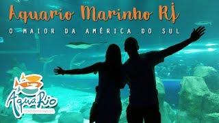 AquaRio Aquário Marinho do Rio - DICAS