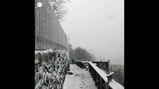 Carl Borg - Snowfall in Stockholm