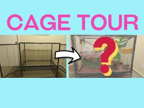 Cage Tour! -Great Decor Ideas