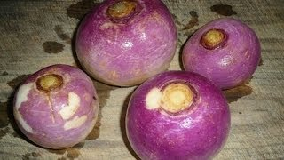 Juicing  How To Make Turnip Juice Recipe Thumbnail
