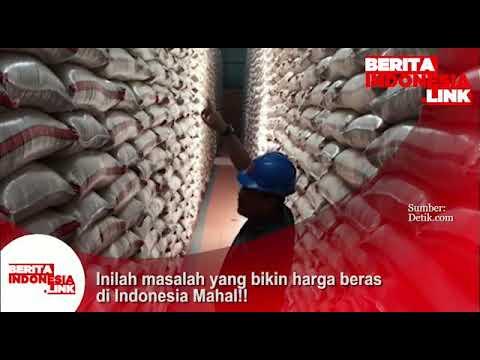 Inilah masalah yg bikin harga beras Indonesia Mahal.