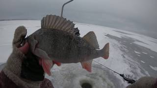 ПОЛНЫЙ ОТРЫВ ПО ОКУНЮ!!! Зимняя рыбалка 2018. Ловля Окуня на Волге.