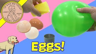 Totally Gross Science Lab Experiments - Beans - Sludge & Eggs!