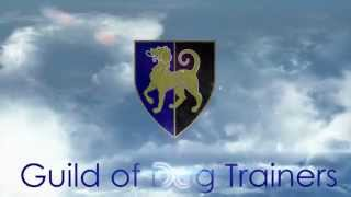 About The Godt - Ceo Sue Williams Bsc Dog Training Godt Tv 4