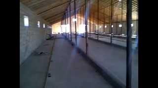 Ферма для крс.3-я часть(Ферма для бычков мясного направления 220 голов., 2012-11-12T20:26:09.000Z)