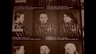 The Holocaust: Understanding This Historical Event (2002)