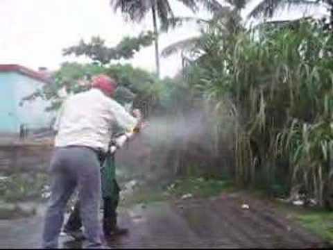 Operativo De Fumigacion En Contra Del Mosquito Del Dengue