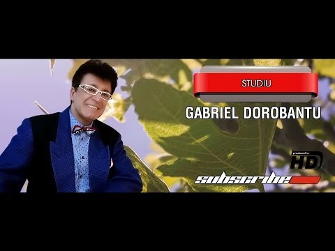 Gabriel Dorobantu Studiu