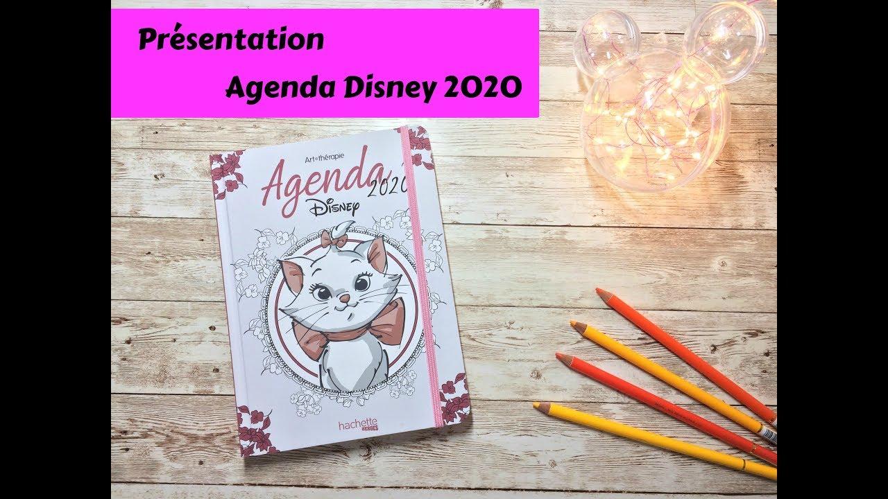 Agenda 8 Disney Hachette coloriage adulte