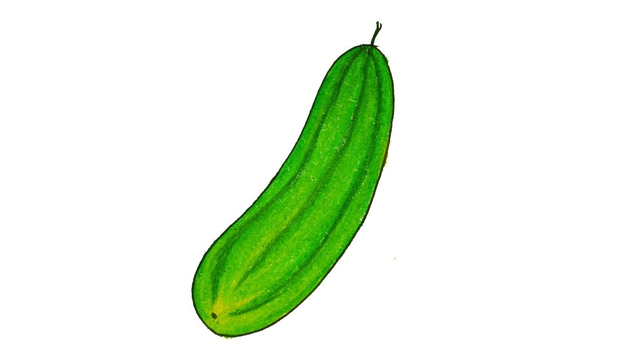 How to draw Cucumber easy and simple (step by step) - YouTube for Drawing Cucumber  110ylc