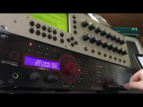 Waldorf micro Q -Ambient sequence-