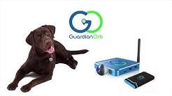 Guardian Orb Pet GPS Tracker