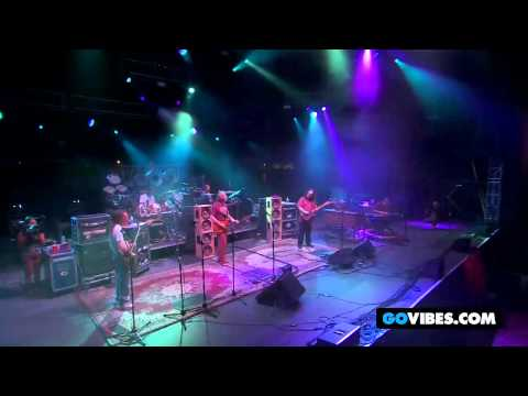 Dark Star Orchestra 'Scarlet Fire' at Gathering of the Vibes 2011