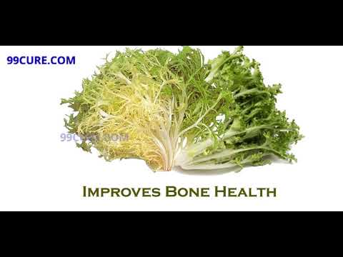 Health Benefits of Endive
