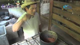 Sombrero Pintado Panameño