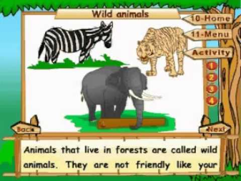 Image of: Educational Learn Science Class The Animal Kingdom Pioneers Education Youtube Youtube Learn Science Class The Animal Kingdom Pioneers Education