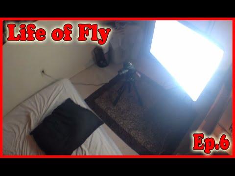 Смотреть порно для fly