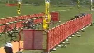 http://triathlon.cc 2007第22回 日本海トライアスロンおしんレース第...