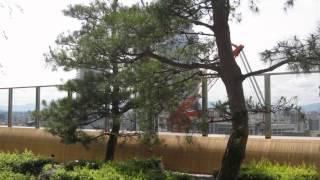 Osaka Station City Umeda 2012 Random Slideshow