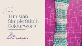 Tunisian Simple Stitch Colourwork