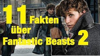 11 FAKTEN über FANTASTIC BEASTS 2 - The Crimes Of Grindelwald