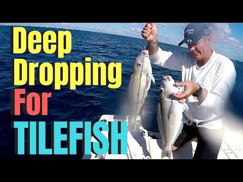 Deep Drop Fishing In South Florida For TILEFISH