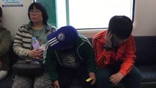 김성원 유채꽃 축제 가는 길