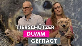 Hassen Tierschützer Menschen? | 1LIVE Dumm Gefragt