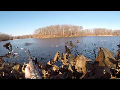 Central Illinois Duck Hunting 2013-2015 ft. Team Towhead
