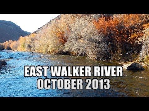 East Walker River - October 2013