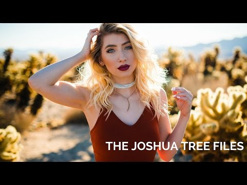 24k Magic at Joshua Tree! (Natural Light Photography)