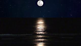 relaxing moon lit beach 8 hours surf sounds hd video
