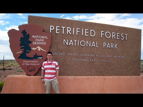 Petrified Forest National Park and Painted Desert in Arizona Tour - Route 66