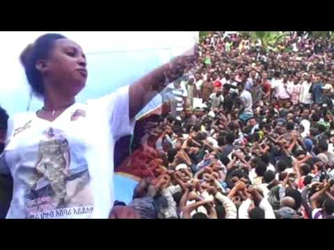 BBN Daily Ethiopian News February 4, 2017