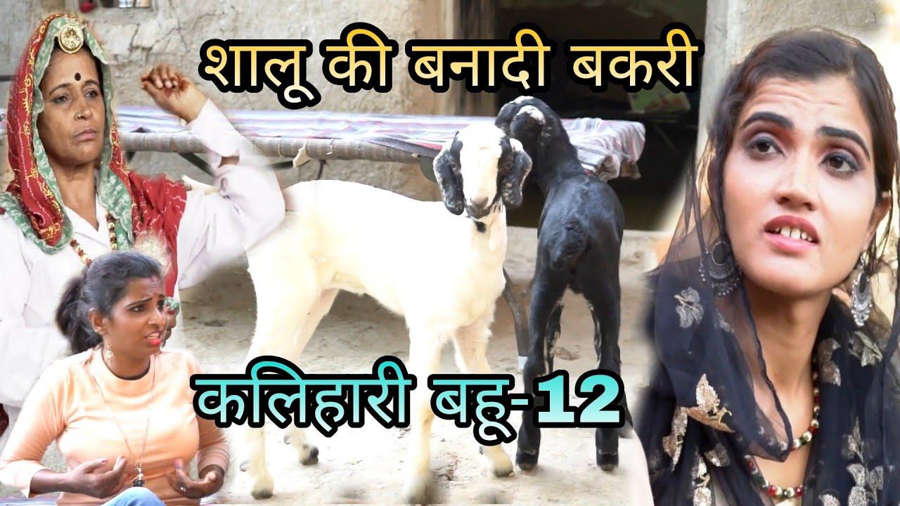शालू की बनादी बकरी//Haryanvi Rajsthani Natak//कलिहारी बहू-12//सास बहू की खिचा तानी//ताई हरियाणवी