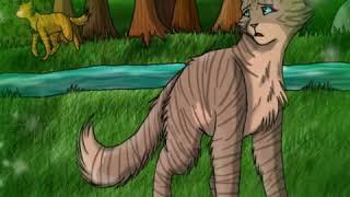 Картинки котов ваителей