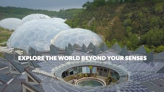 Invisible Worlds exhibition - Eden Project