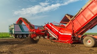 GRIMME CleanLoader | Brand new field loader