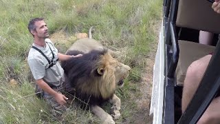 Walking With The Volunteers   The Lion Whisperer