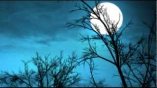 JOE HARNELL & HIS ORCHESTRA - FLY ME TO THE MOON (BOSSA NOVA)