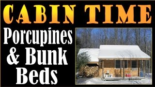 Cabin Time, Porcupines And Bunkbeds.